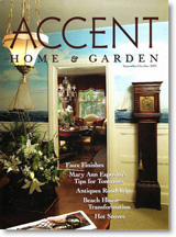 accent cover 1